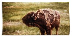 Beach Sheet featuring the photograph American Bison Into The Wind by Chris Bordeleau