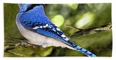 Blue Jay Bokeh Beach Sheet