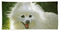 American Eskimo Or Eskie Dog Beach Sheet by Sandi OReilly