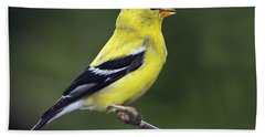 American Golden Finch Beach Towel