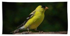 American Goldfinch Male Beach Sheet