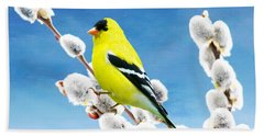 American Goldfinch Perched On Pussy Willow Beach Towel
