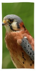 American Kestrel Beach Sheet