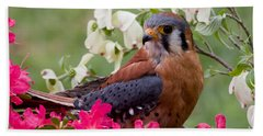 American Kestrel In The Springtime Beach Towel