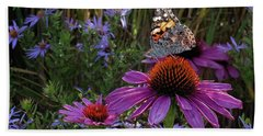 American Painted Lady On Cone Flower Beach Sheet