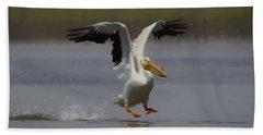 American White Pelican Da 3 Beach Sheet by Ernie Echols
