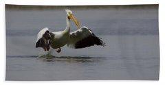 American White Pelican Da Beach Sheet by Ernie Echols