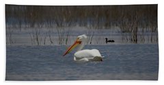 American White Pelican Searching Da Beach Sheet by Ernie Echols