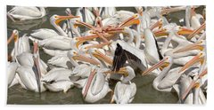 American White Pelicans Beach Sheet by Eunice Gibb