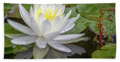American White Water Lily Beach Towel