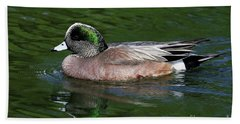 Beach Towel featuring the photograph American Wigeon Anas Americana Duck by Sue Harper
