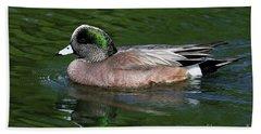 American Wigeon Anas Americana Duck Beach Sheet