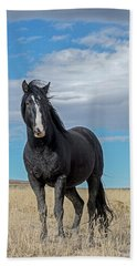 Beach Towel featuring the photograph American Wild Horse by Scott Read