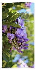 Beach Towel featuring the photograph Amethyst Shower by Ella Kaye Dickey