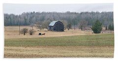 Amish Country 0754 Beach Sheet by Michael Peychich