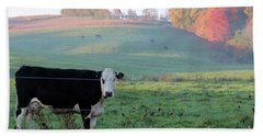 Amish Cow Early Morning  5788 Beach Towel
