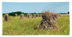Beach Sheet featuring the photograph Amish Harvest by Cricket Hackmann