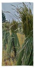 Amish Harvest Beach Sheet