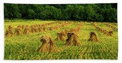 Amish Hay Field Beach Towel by Elijah Knight