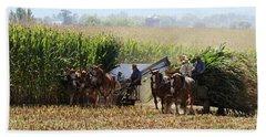 Amish Men Harvesting Corn Beach Towel