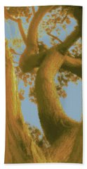 Among The Trees Beach Towel