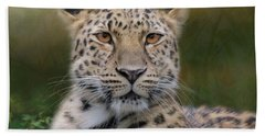 Beach Towel featuring the photograph Amur Leopard by Patti Deters