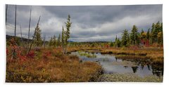 Beach Towel featuring the photograph An Autumn Afternoon On Raquette Lake by David Patterson