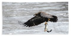An Eagles Catch 10 Beach Towel by Brook Burling
