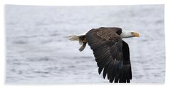 An Eagles Catch 11 Beach Towel by Brook Burling