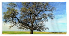 Beach Sheet featuring the photograph An Oak In Spring by James Eddy