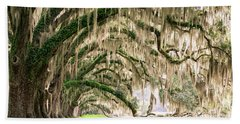 Ancient Southern Oaks Beach Towel by Serge Skiba