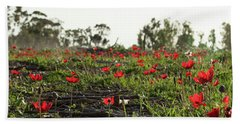 Beach Towel featuring the photograph Anemones Forest Panorama by Yoel Koskas