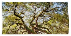 Angel Oak In Spring Beach Sheet