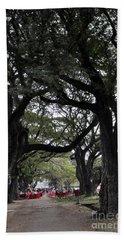 Angkor Wat Trees Beach Sheet