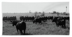 Angus Herd Cow Count Beach Towel by Michele Carter