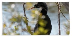 Beach Towel featuring the photograph Anhinga 3 March 2018 by D K Wall