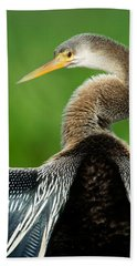 Anhinga Anhinga Anhinga, Pantanal Beach Towel by Panoramic Images