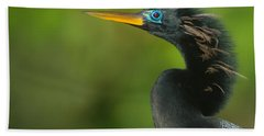 Anhinga Anhinga Anhinga, Tortuguero Beach Towel by Panoramic Images