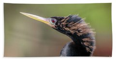 Anhinga Portrait Beach Sheet