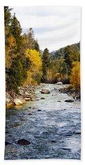 Beach Towel featuring the photograph Animas River by Kurt Van Wagner