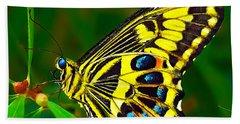Anise Swallowtail Butterfly Beach Sheet