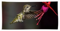 Anna Juvenile Hummingbird Beach Towel