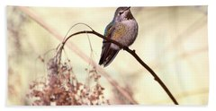 Anna's Hummingbird Closeup Beach Towel by Peggy Collins