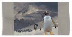 Antarctic Magesty Beach Towel