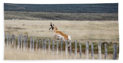 Beach Sheet featuring the photograph Antelope Jumping Fence 1 by Rebecca Margraf