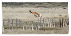 Beach Towel featuring the photograph Antelope Jumping Fence 2 by Rebecca Margraf