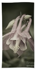 Beach Towel featuring the photograph Antique Columbine - D010096 by Daniel Dempster