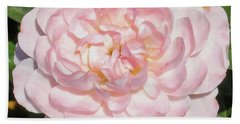 Antique Pink Rose Beach Towel