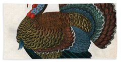 Antique Print Of A Turkey, 1859  Beach Towel