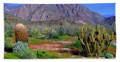 Anza-borrego Desert State Park Ca Beach Towel